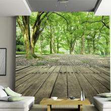 Photo Wallpaper Waterproof Forest Nature