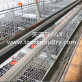 Broiler cage system for Chicken