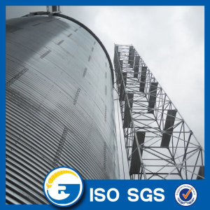 Soybean Paddy Wheat Corn Maize Storage Silo