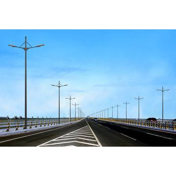 High Quality for China supplier of Street Lighting Pole, Lamp Pole, Powder Coated Lighting Pole Outdoor Lighting Mast export to Reunion Supplier