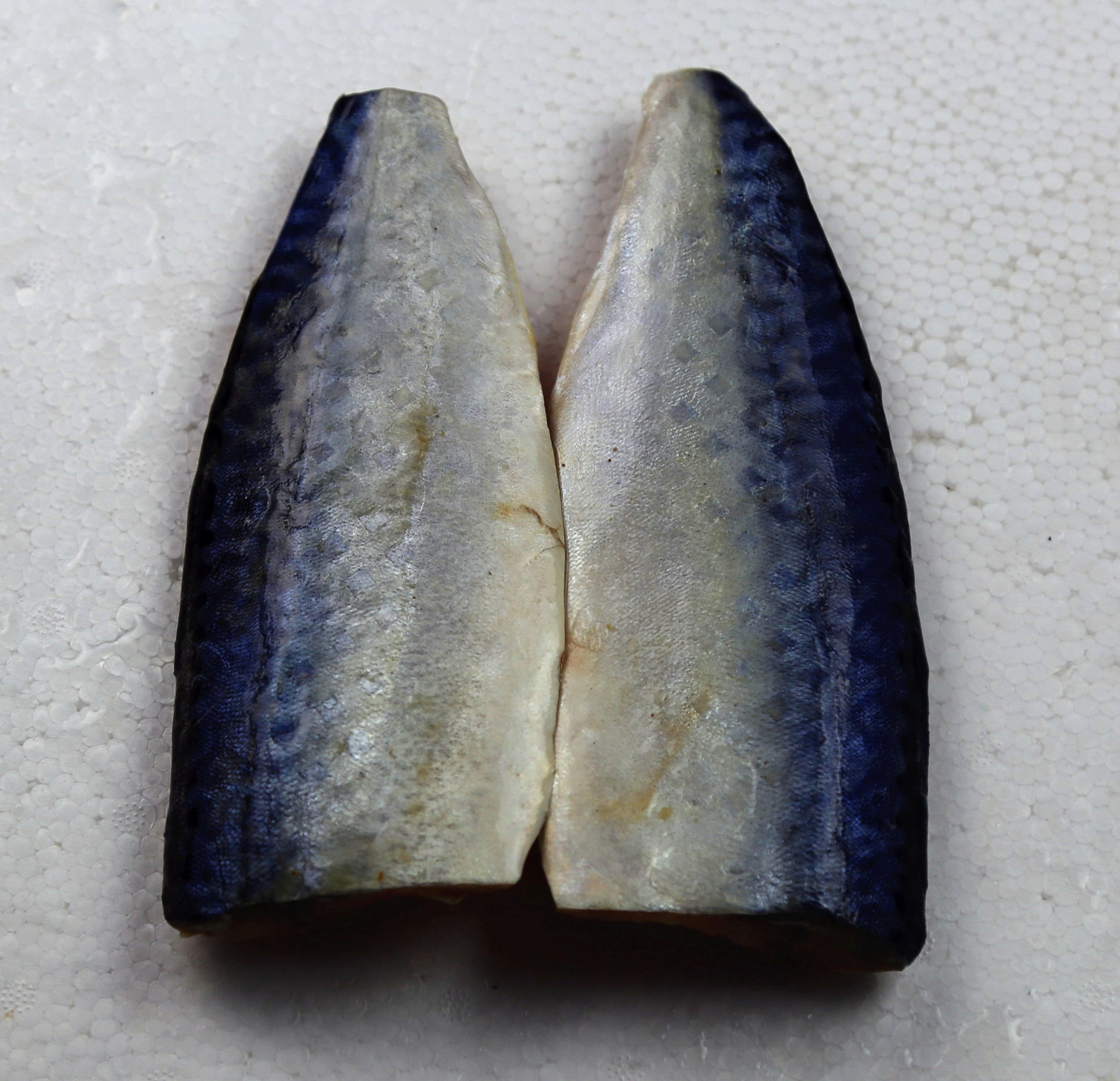 Sea Frozen Mackerel Fillet Piece