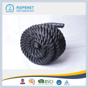 China Factory for for Training Rope PET Material Power Training Battle Rope export to Syrian Arab Republic Factory