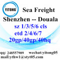 Shenzhen Logistics Services to Douala