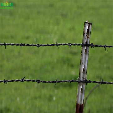 Quality Prison Barbed Wire Fence