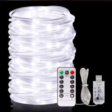 Professional for Christmas Rope Lights Garden Christmas Waterproof LED Rope Lights export to Mexico Manufacturer