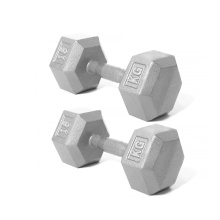 Supply for for Workout Cast Iron Dumbbell 15KG Cast Iron Hex Dumbbell export to Tunisia Supplier