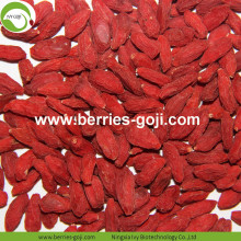 Wholesale Super Food Improve Eyesight Zhongning Goji Berries