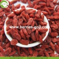 Hot Sale Super Dried Fruit Anti Tumor Wolfberries