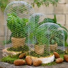Galvanized Hexagonal Chicken Wire For Poultry Fencing