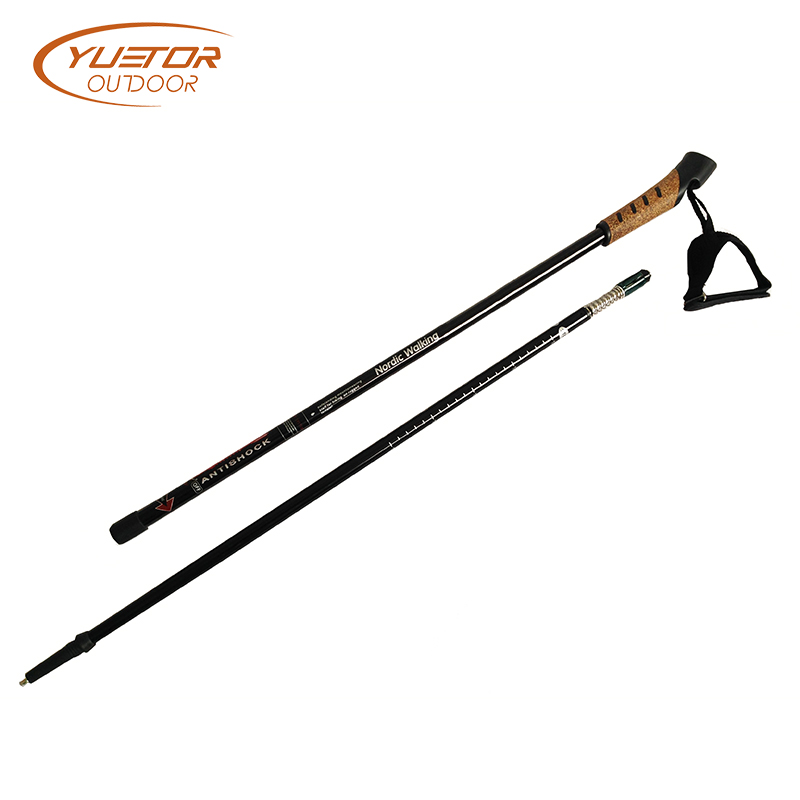 2 section walking poles