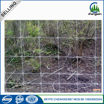 Hot Dipped Galvanized Deer Fence