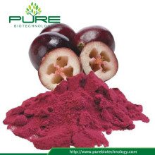 Hot Selling spray-dried cranberry fruit powder