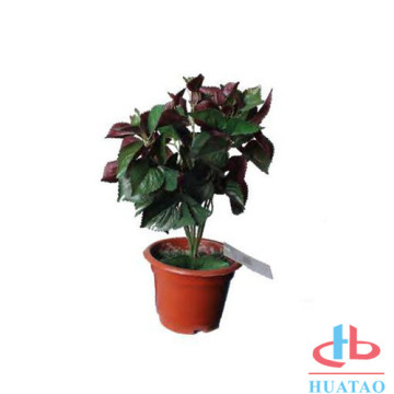 PE Artificial Potted Plant With Decorative Flowers