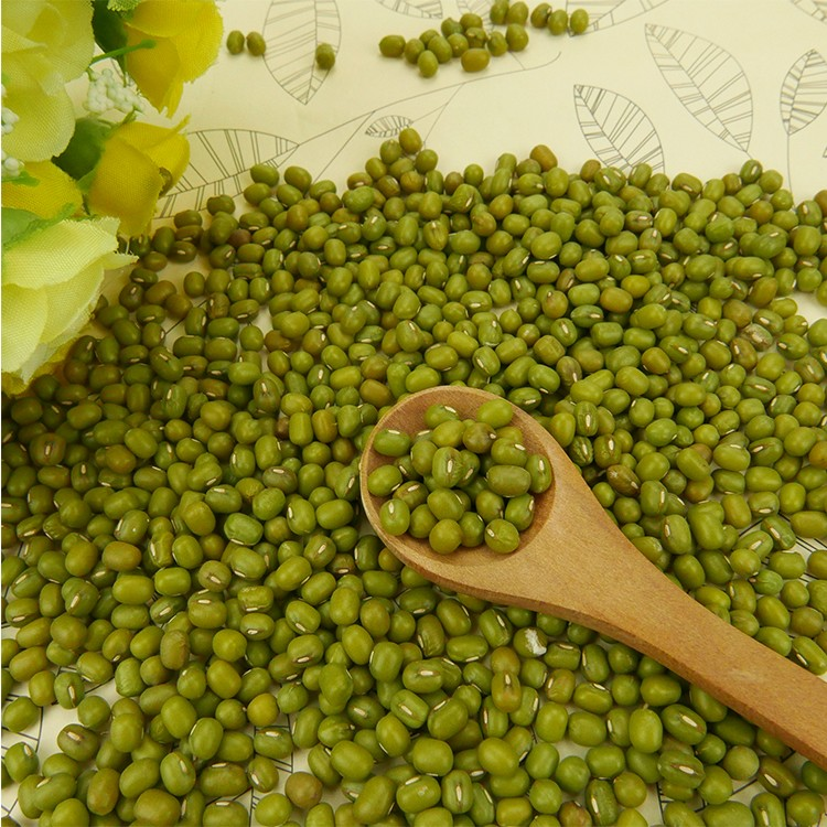 Well Selected Small Green Mung Bean