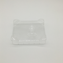 China Professional Supplier for China PS Blister Packaging Tray,PS Flocking Blister Trays,PS Electronics Blister Tray Manufacturer and Supplier PS electronic products packaging blister tray export to Guam Factory