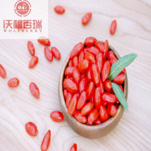 Goji berries can treat or prevent visual degeneration