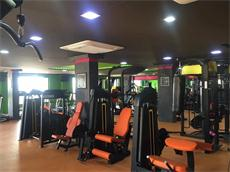 Professional Gym Fitness Equipment