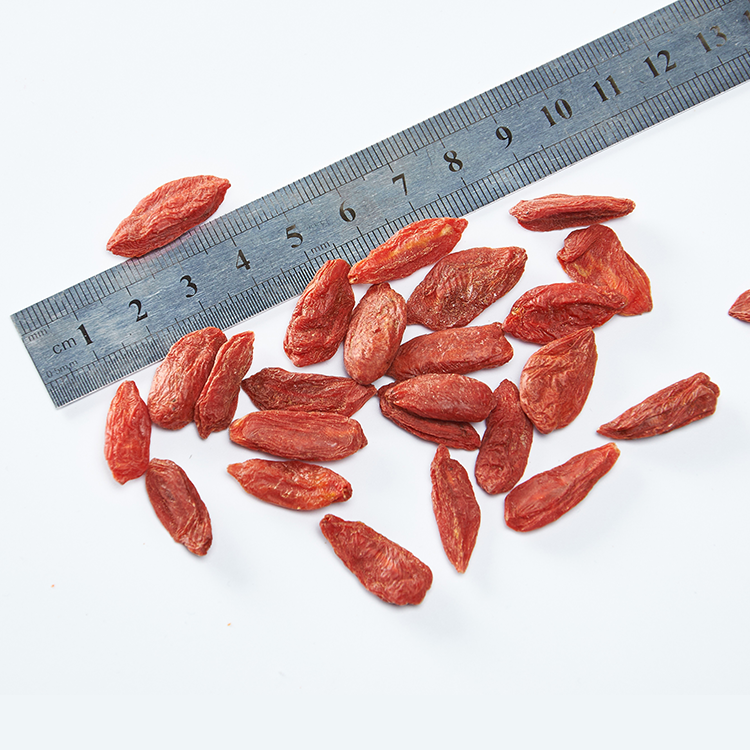 Low Pesticide Dried Goji Berry Larger and Juicier