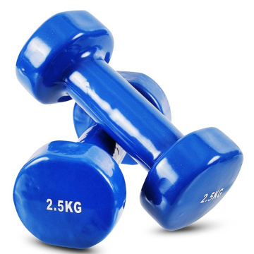 OEM/ODM China for Crossfit Workout Vinyl Dumbbell 2.5 KG Vinyl Dumbbell export to Mexico Supplier