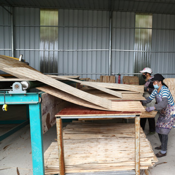 Veneer Dryer Machine For Plywood Production Line