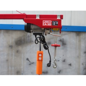 PA min electric hoist 200kg