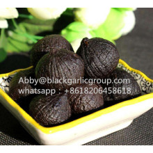Best price peeled single black garlic