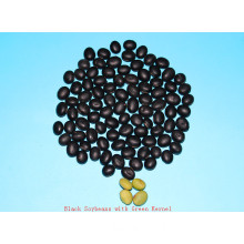 Dried black beans with green kernel