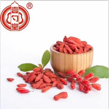 Dried organic goji berries fruit good for health
