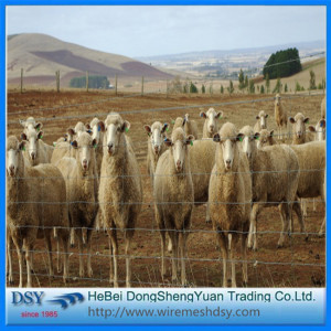 Wire mesh fence kit sheep fence farm fence