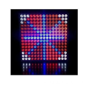 Slim Red & Blue 45W LED Tupulaina le Malamalama