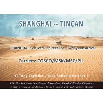 Shanghai Sea Freight to Tincan