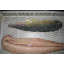 High Quality for Frozen Fishes Portion Frozen Mahi Mahi Fillet export to Brunei Darussalam Importers