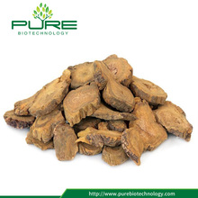 Low price wild Rhubarb root herbal Da Huang