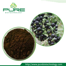 Anthocyanin 10%-40% Black Goji Berry Extract Powder