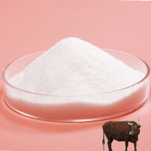 Body Health Care Chondroitin Sulfate White Powder