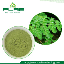 Herbal Extract bulk moringa leaf extract powder