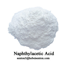 Synthetic Plant Hormone Naphthylacetic Acid