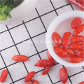 Freeze Berry Goji Berry Fruit