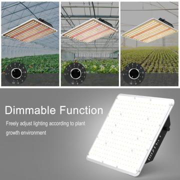 Commercial LED Grow Lighting 100W