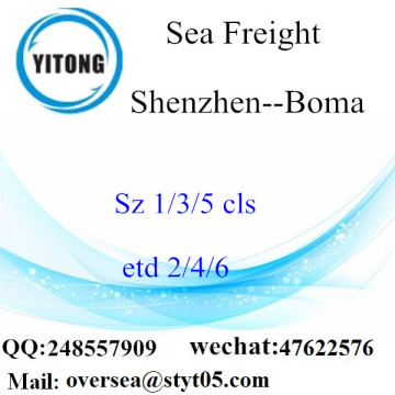 Shenzhen Port LCL Consolidation To Boma