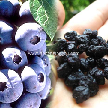 Chinese Delicious Dried Blue Berry