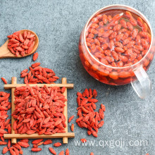 Raw organic goji dried berries for sale