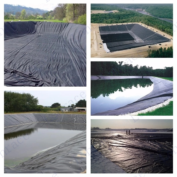 For Shrimp And Tilapia Farm