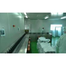 China for Automatic Uv Spray Coating Machine Plastic Automatic UV Coating Production Line export to Bulgaria Importers