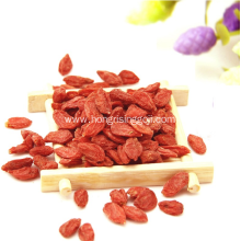 New Certificate Organic Dried Ningxia Goji Berry
