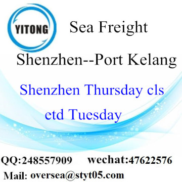 Shenzhen Port LCL Consolidation To Port Klang
