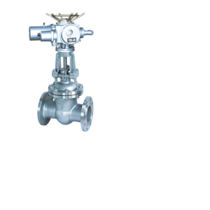 Electric Stainless Wedge Gate Valve