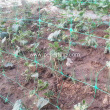 agricultural plastic bean net