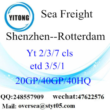 Shenzhen Port Sea Freight Shipping To Rotterdam