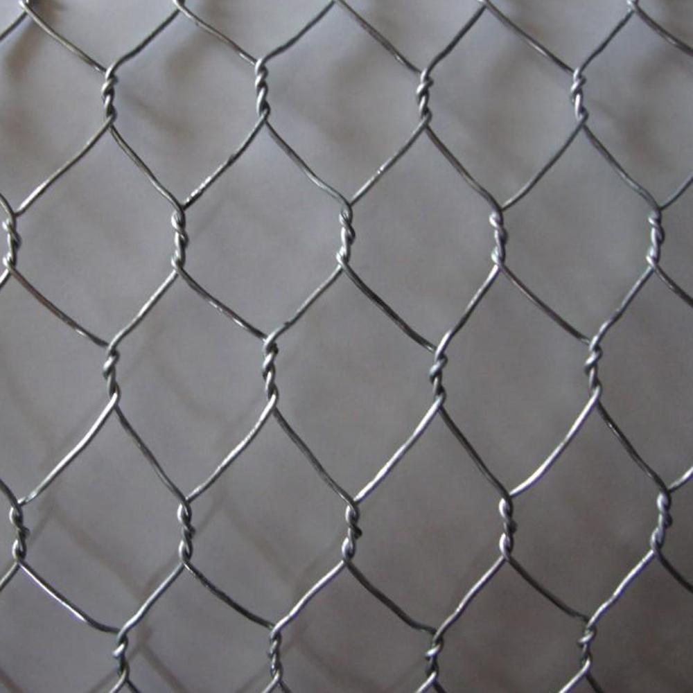 Profeessional Galvanized Hexagonal Wire Mesh Netting China